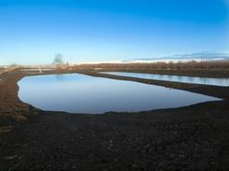 How Washington farmers are moving to smarter water solutions | Crosscut.com | Food issues | Scoop.it