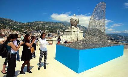 DIAPO. Ils ont l'art de changer l'image des requins à Monaco | Requins | Scoop.it