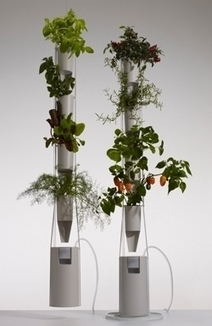 Windowfarms Raises $230K+ on Kickstarter to Manufacture New System Locally - Forbes | Crowdfunding World | Scoop.it