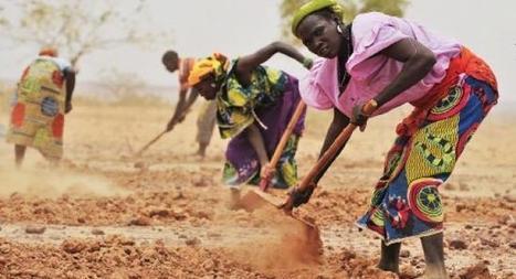 NATURA - MEDIO AMBIENTAL ©: El cambio climático afecta también a las mujeres africanas | Infraestructura Sostenible | Scoop.it