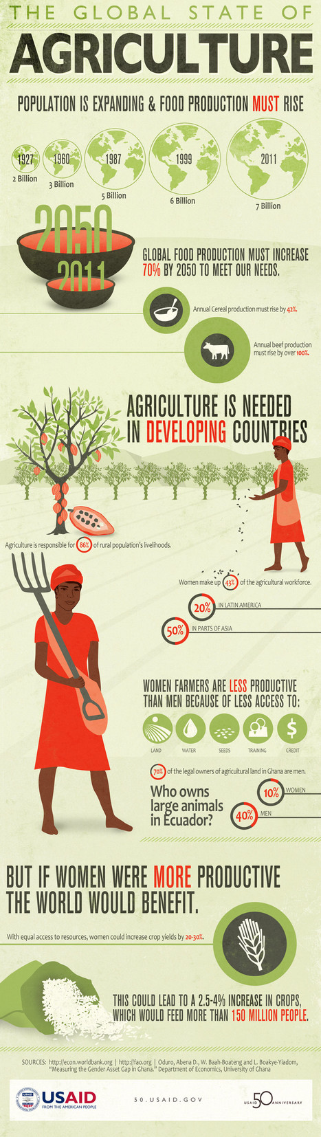 Global State of Agriculture | Human Geography | Scoop.it