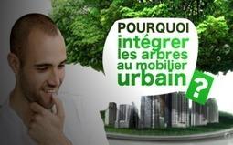 Pourquoi intégrer les arbres au mobilier urbain ? | L'agenda Déco - architecture | Scoop.it
