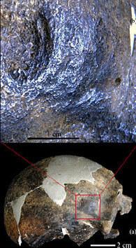 Des traces de violence à la préhistoire 200 000 ans en arrière - Hominidés | Prehistoire | Scoop.it