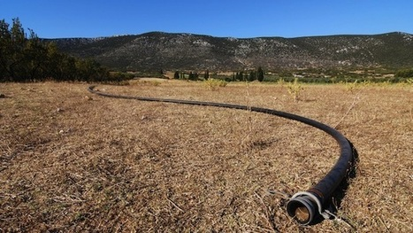 California farmers: Drill, baby, drill (for water, that is)   Sustain Our Earth   Scoop.it