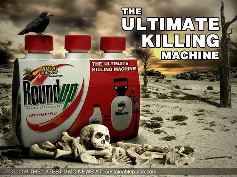 "THE ULTIMATE KILLING MACHINE:  New Charges Against Monsanto's ""Pesticide"" Roundup 