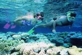 Twenty reasons to visit Cairns - Sydney Morning Herald | Port Douglas Accommodation | Scoop.it