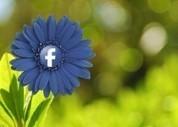 Cómo crear y gestionar listas de páginas yperfiles en Facebook | AgenciaTAV - Asistencia Virtual | Scoop.it