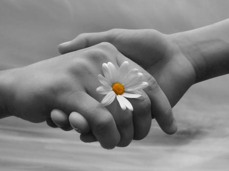 Imparare a perdonare se stessi e gli altri | Thanks Attitude | Scoop.it