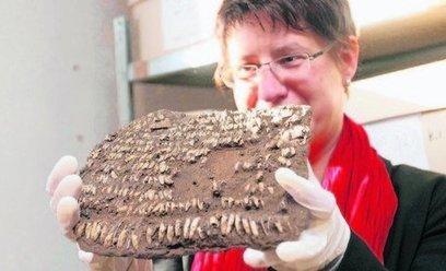 Staunen pur | World Neolithic | Scoop.it