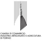 Abolizione dell'Albo delle imprese artigiane e della CPA del Piemonte | News | Directio - le strade nell'economia | BeraPartners | Scoop.it
