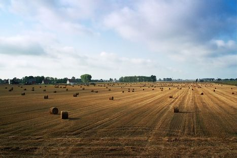 Retrouvez le documentaire de France2tv sur les sols et l'agroécologie | AGRONOMIE VEGETAL | Scoop.it