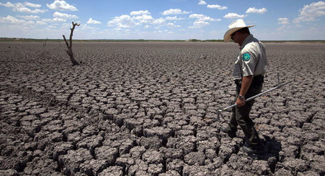 Scientists: 2015 was Earth's hottest year | World Environment Nature News | Scoop.it