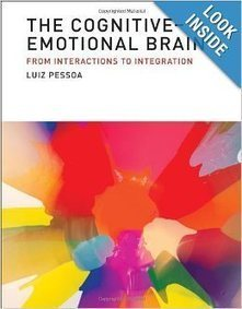 The Cognitive-Emotional Brain   ADHD   Scoop.it
