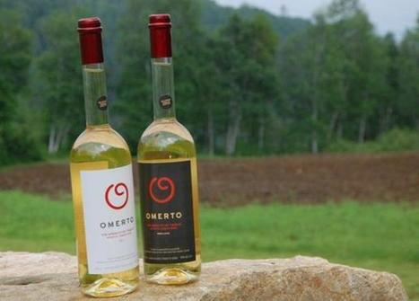 Un québécois invente le premier vin à la tomate - meltyFood   Oeno-tourisme   Scoop.it