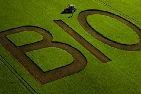 L'agriculture bio est devenue un secteur économique à part entière | Environnement et développement durable, mode de vie soutenable | Scoop.it
