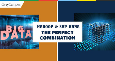 The Perfect Big Data Combination: Hadoop and SAP HANA | Big Data & Digital Marketing | Scoop.it