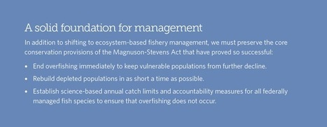 Ecosystem-Based Fisheries Management: Improving Ocean Ecosystems | All about water, the oceans, environmental issues | Scoop.it