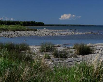 Door County Wetlands Recognized As Internationally Significant - DoorCountyDailyNews.com | Fish Habitat | Scoop.it