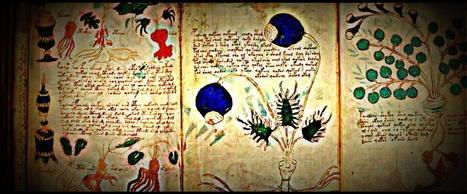 The World's Most Mysterious Manuscript   General linguistics   Scoop.it