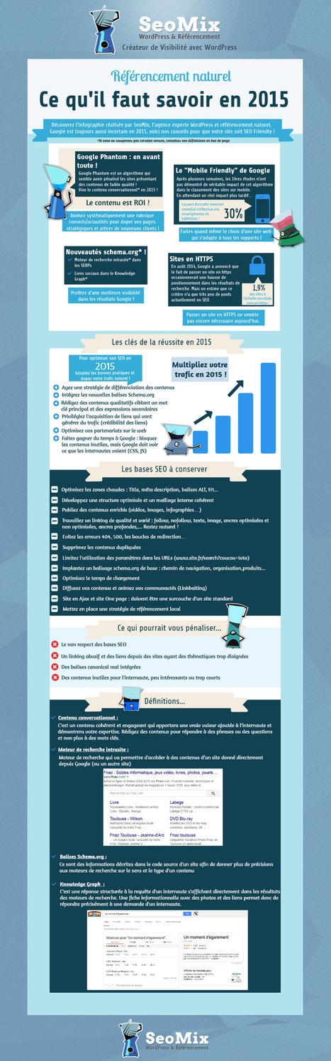 Infographie SEO 2015 : les conseils de SeoMix | Entrepreneurs du Web | Scoop.it