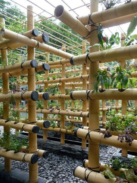 Vertical Gardening | The city of tomorrow | Scoop.it