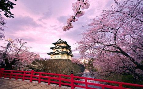 Japan Travel Guide   ClubZone Asia   Nightlife   Scoop.it