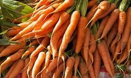Major hotel chain to grow vegetables at 1000 properties to cut food waste   Gardening   Scoop.it