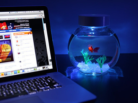 Gadget Innovation: Electronic Goldfish in a Bowl   The Jazz of Innovation   Scoop.it