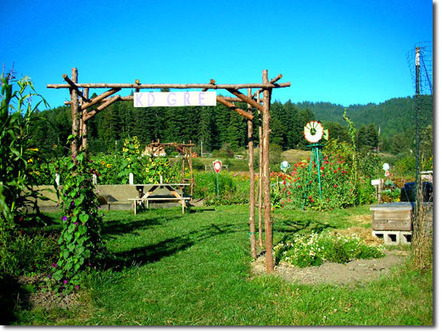 A New Fundraising Tool for Permaculture Permaculture Research Institute | The Next Edge | Scoop.it