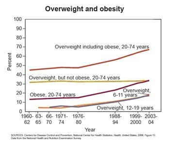 Obesity in America: How bad it is | Beachfitrob | Scoop.it