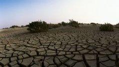 Un rapport inédit sur les conséquences du réchauffement climatique pour l'Aquitaine | Agriculture en Dordogne | Scoop.it