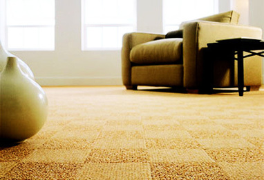 Your Carpet and Your home | Carpet Cleaner Review Site | Joseph Feels Great In His Carpet | Scoop.it
