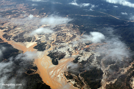 Peru slashes environmental protections to attract more mining and fossil fuel investment | Peruvian Amazon | Scoop.it