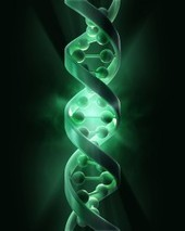 Chemotherapy in Parents May Make Offspring's DNA Unstable & Riddled With Mutations   80beats   Discover Magazine   Library of Science and Technology   Scoop.it