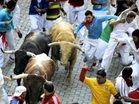 Animal rights group wants Pamplona bull run banned | NTN24 NEWS | Animals R Us | Scoop.it