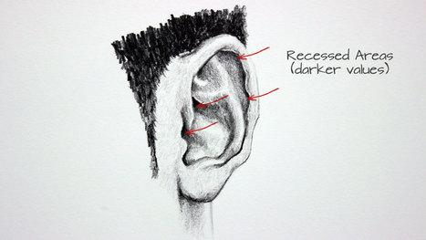 Come disegnare le orecchie   Circolo d'Arti   Scoop.it