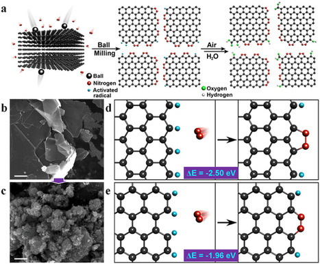 Direct nitrogen fixation at the edges of graphene nanoplatelets as efficient electrocatalysts for energy conversion : Scientific Reports : Nature Publishing Group   Other World   Scoop.it