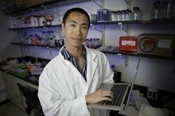 Researchers Calculate Cell Chemical Reaction Rates Using Gene Expression | Biomolecules | Scoop.it