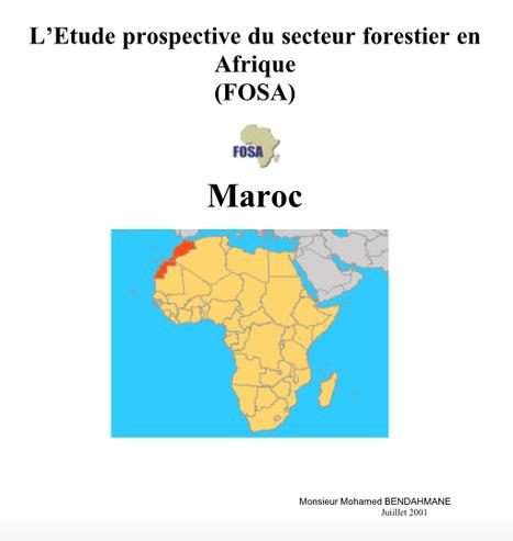 L'Etude prospective du secteur forestier en Afrique | foresighting | Scoop.it
