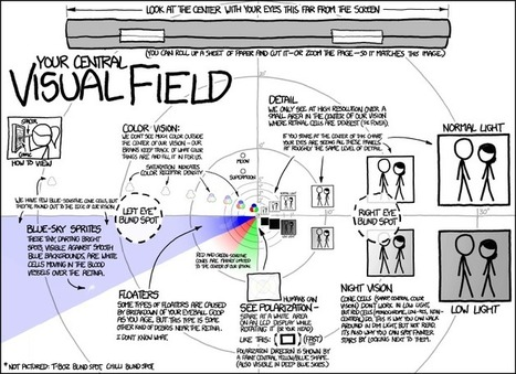 xkcd: Visual Field | The brain and illusions | Scoop.it