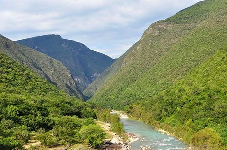 Nueva Ley de biodiversidad del Estado de Querétaro | Ediciones JL | Scoop.it