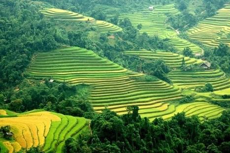 Application de création de voyage sur mesure   Créer son voyage vietnam sur mesure en ligne   Scoop.it
