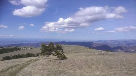 Summit of Le Lance today in Drome... - William Armstrong   Facebook   Walking Holidays in France   Scoop.it