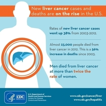 CDC - Liver Cancer | Hepatitis C New Drugs Review | Scoop.it