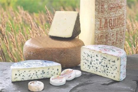 THUIR - Les fromages de qualité d'Occitanie viennent à la rencontre des Thuirinois ! | Made In Sud de France | Scoop.it