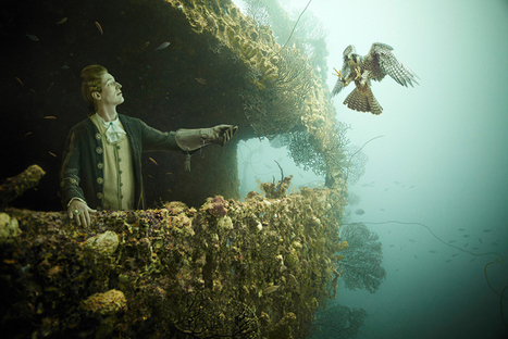 stavronikita project - underwater photography by andreas franke | Underwater 3D Film | Scoop.it