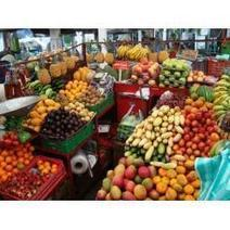 Fruits of Colombia, Nutritional and Natural Remedies | My hubpages and Squidoo Lenses, Colombia | Scoop.it