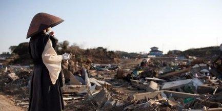 Japon : des fonds pour les rescapés du tsunami versés à compter des tortues | Economie Responsable et Consommation Collaborative | Scoop.it