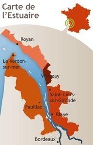 Soirée au Phare de La Coubre (31.08.12) | Estuaire de la Gironde | Communauté de communes Médoc-Estuaire | Scoop.it