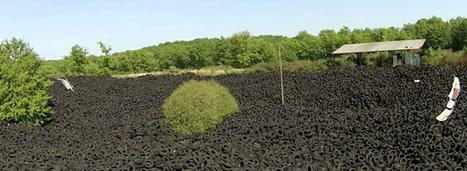 Des millions de pneus abandonnés en pleine nature ! | Crakks | Scoop.it